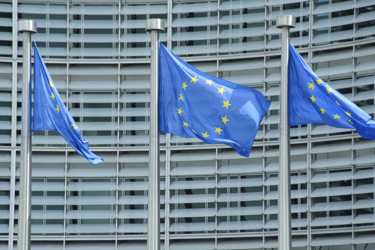 Sallivus ja demokraatia europarlamendi moodi: kambakas ebameeldivatele jõududele