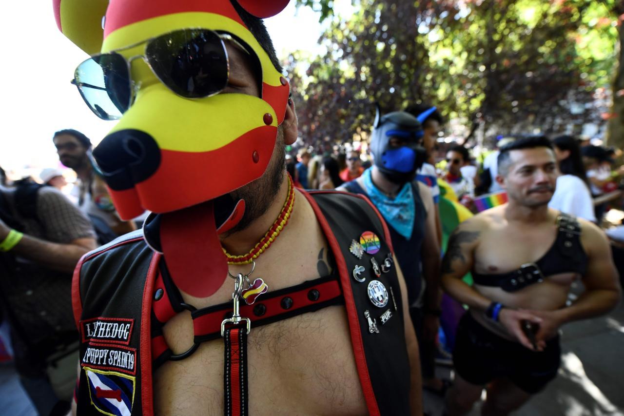 Homoparaadid lülitavad oma austajate sekka juba ka uudishimulikud
