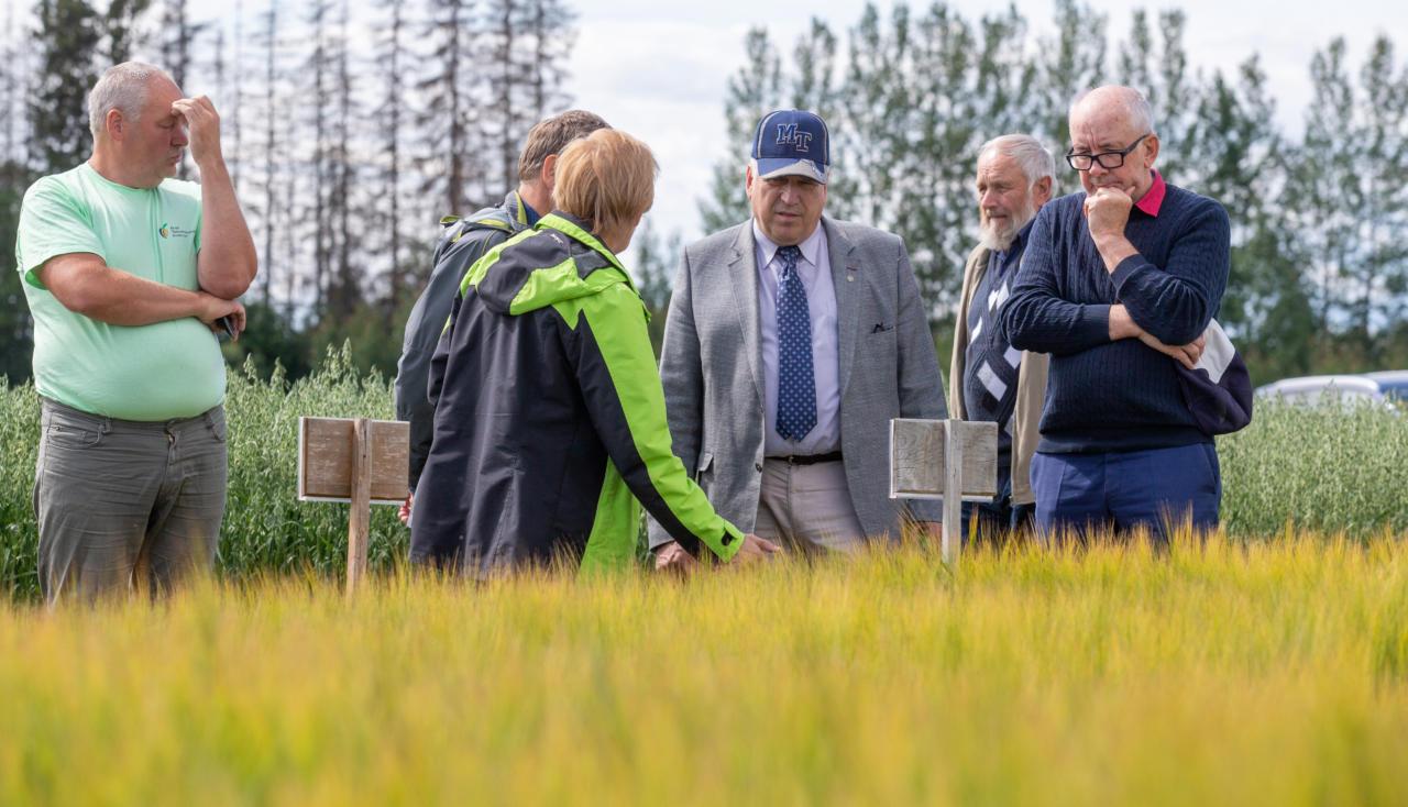 Maaomanik tunnustab minister Mart Järvikut julguse eest lobistidega võidelda