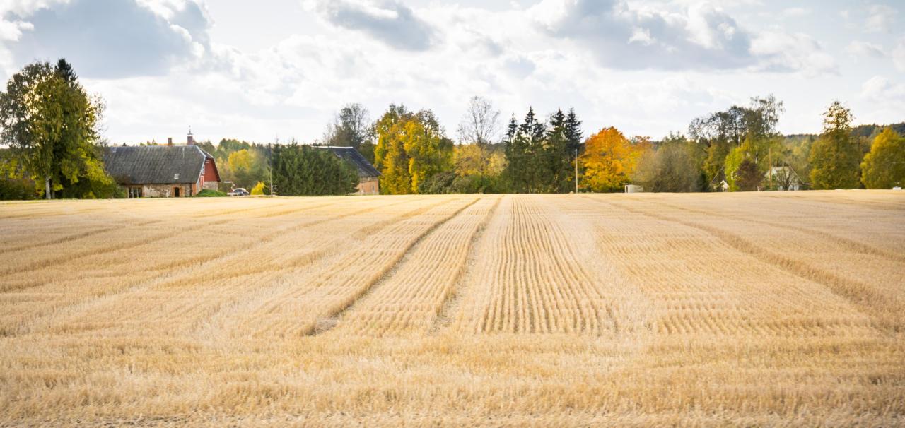 EKRE ettepanekul eraldati põllumajandusele veel viis miljonit
